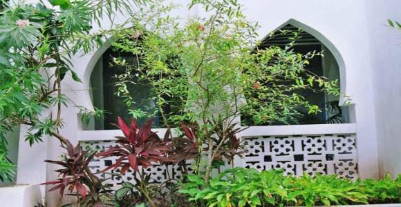 Oleander and verandah_jpg
