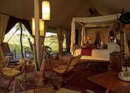 sabora-plains-tented-camp-1