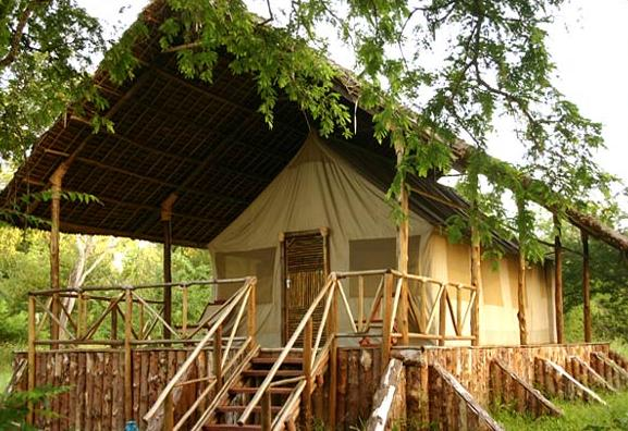 Selous-Riverside-Camp1