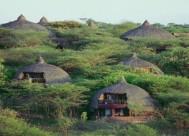 serengeti-serena-lodge-1