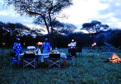 serengeti-sopa-lodge-1
