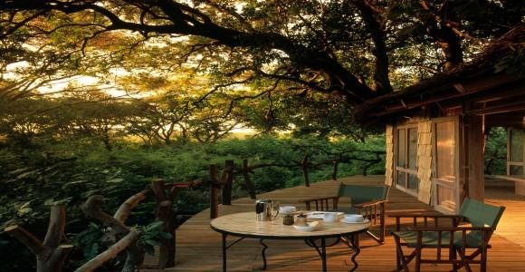 Lake Manyara - Tree Lodge